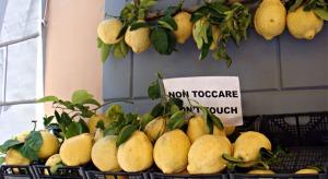 original-sorrento-lemon